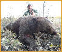 Alberta Black Bear Hunting